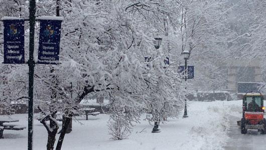 Winter storm begins at Weiskotten Hall