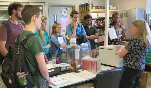 College students learn about the biomedical sciences through SURF program
