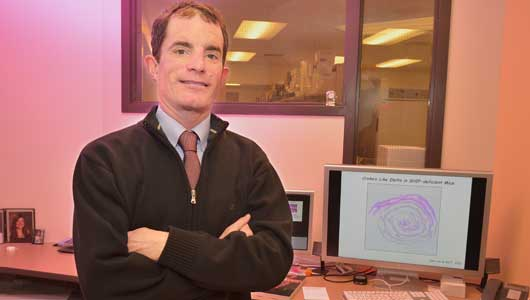 Upstate discovery advances understanding of inflammatory bowel disease