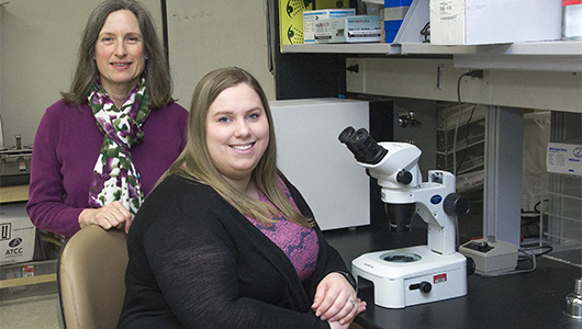 Upstate, ESF reseachers use synthetic protein to disrupt work of bacteria