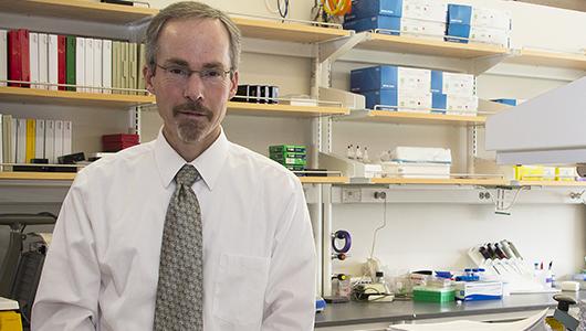 Researchers discover key link in understanding sleep disorders