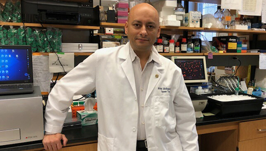 Mehdi Mollapour is named Vice Chair for Translational Research for Urology