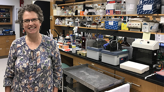 Researcher is awarded $1.1 million NIH grant to continue studies on enzymes to better understand neurodegenerative diseases