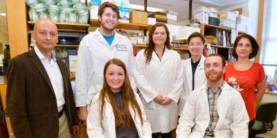 Office partners students with researchers for a summer of scientific discovery