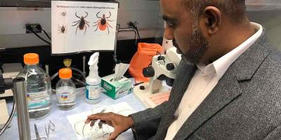 Upstate to begin testing ticks from public on June 1