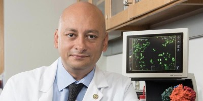 Upstate researcher lands five-year NIH grant for $2.2 million to study chaperone proteins linked to cancer