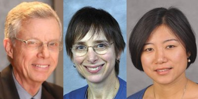 Three Upstate researchers participate in international study looking at ADHD and cardiometabolic diseases