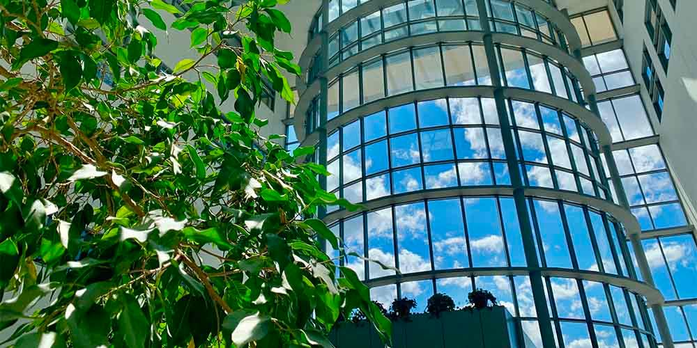 LETTING THE SUNSHINE IN: The atrium of the Institute of Human Performance highlights a beautiful late spring day in Syracuse. Research activities in the building have restarted having been shuttered since mid-March at the start of the COVID-19 pandemic in Syracuse.