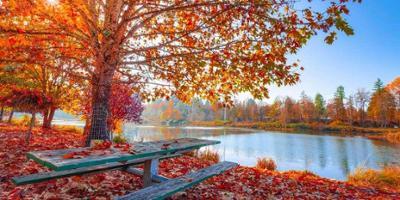 Fall safety tips to enjoy the season