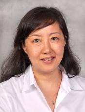 Wenyi Feng, PhD