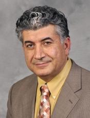 Mark Laftavi profile picture