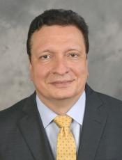 Julio Licinio profile picture