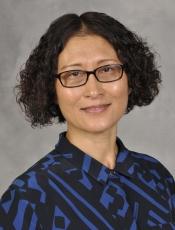 Qun Wang, MD/PhD