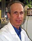 Allen E Silverstone, PhD