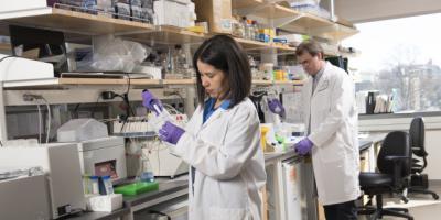 Regenerative medicine teaches the body to repair itself
