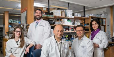 Revealing research: Kidney tumor analysis helps decipher proteins' role in cancer development