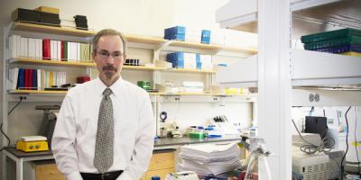 Understanding microRNA: Tiny keys could unlock treasure trove of medical knowledge