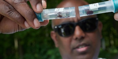 Scientists come to Upstate for in-depth opportunity to study ticks